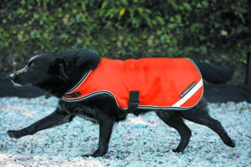 Rambo Dog Rug - Flourescent Orange