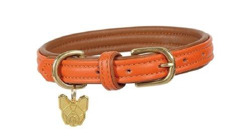 Digby & Fox Padded Leather Dog Collar - Orange
