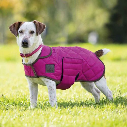 Digby & Fox Quilted Dog Coat - Raspberry