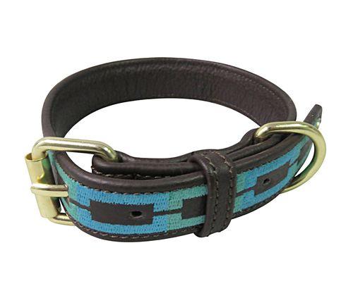 Halo Sam Leather Dog Collar - Brown/Sky Blue/Kelly Green
