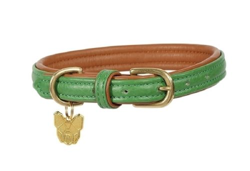 Digby & Fox Padded Leather Dog Collar - Green