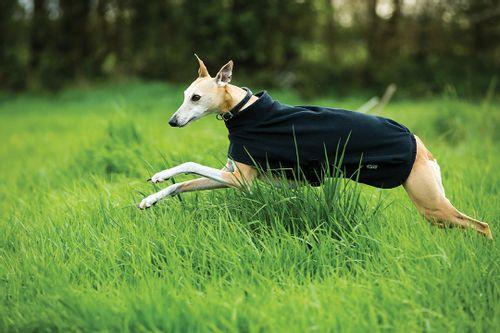 Amigo Fleece Dog Rug - Black