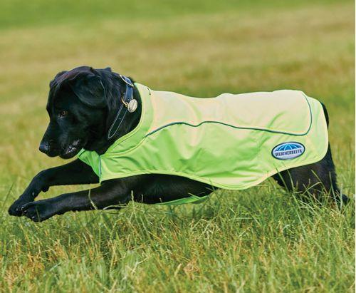 Weatherbeeta Reflective Exercise Dog Coat - Yellow