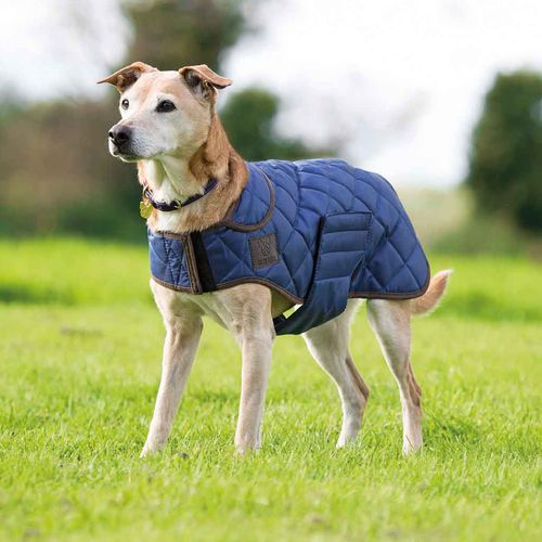 Digby & Fox Quilted Dog Coat - Navy