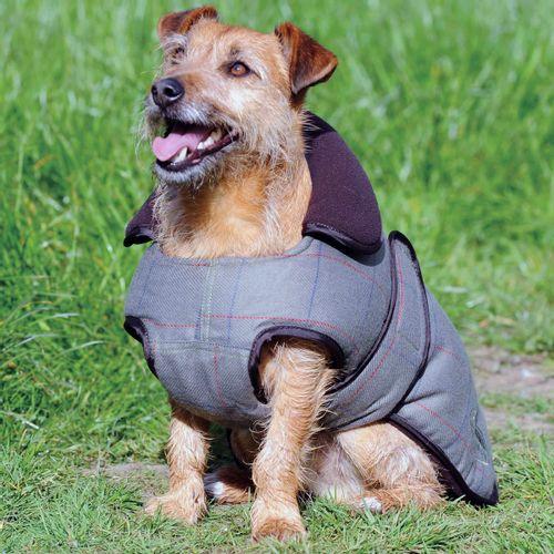 Weatherbeeta Tweed Dog Coat - Olive