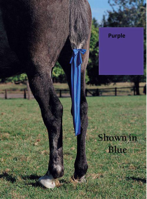 Jammies Tail Bag - Purple