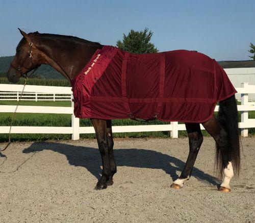 Back on Track Mesh Sheet - Burgundy