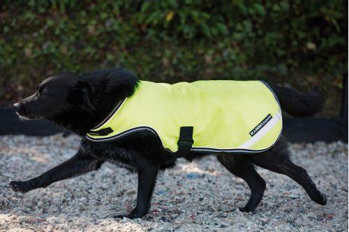 Rambo Dog Rug - Flourescent Yellow