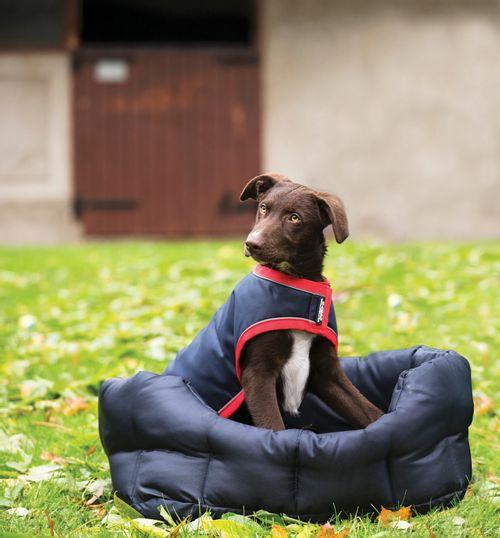 Rambo Waterproof Dog Rug 100g - Navy/Red