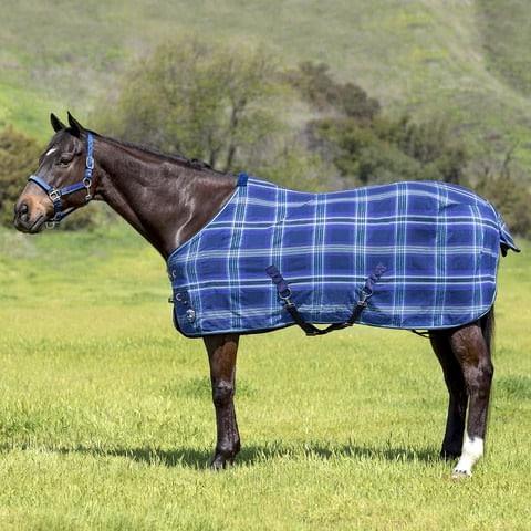 Kensington Poly Cotton SureFit Stable Sheet - Kentucky Blue