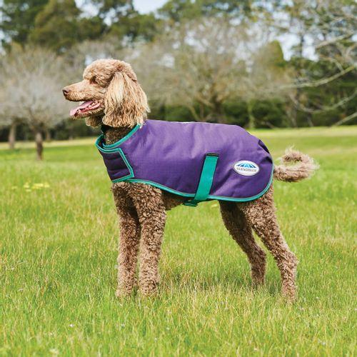 Weatherbeeta Comfitec Premier Free Parka Deluxe Medium Weight Dog Coat - Purple/Green