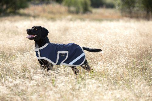 Amigo Ripstop Dog Rug - Navy/Silver