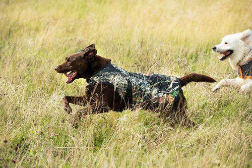 Rambo Dog Rug - Green Camo