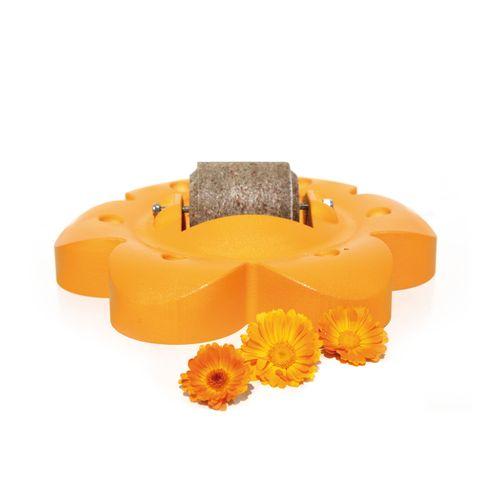 Officinalis Officinalis Flower with LollyRoll - Orange