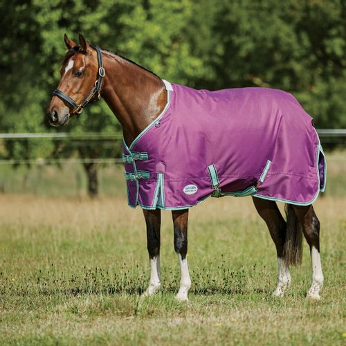 Weatherbeeta Comfitec Premier Freedom Pony Standard Neck Medium - Purple/Navy/Mint