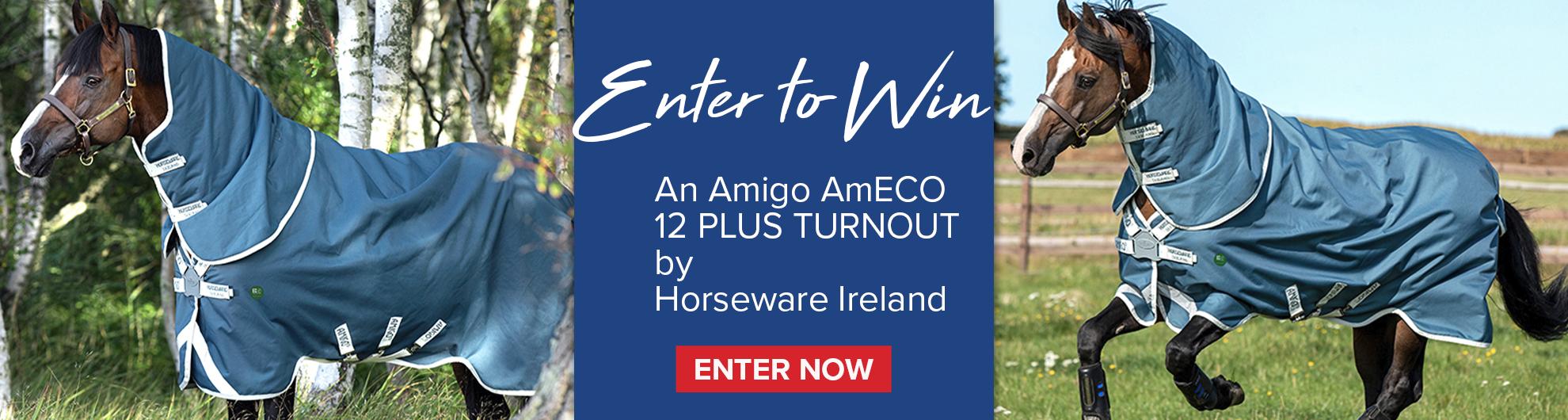 Horseware Amigo AmECO Giveaway