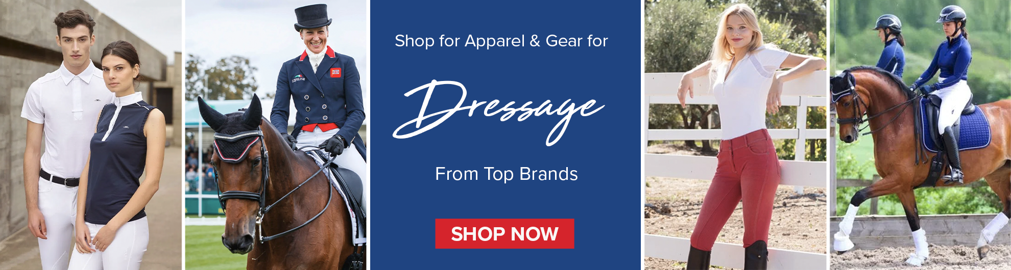 Dressage Apparel & Gear for Hose and Rider